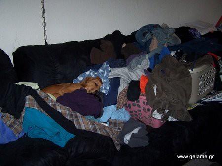 warm-laundry-500x375