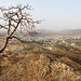 India_nature (9)