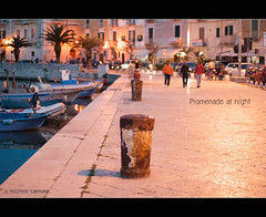 Promenade at night (Explored for Nikon D3000) photo by Michele Cannone