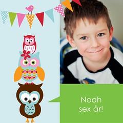 Noah 6 år