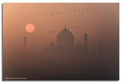 Misty Taj photo by DanielKHC