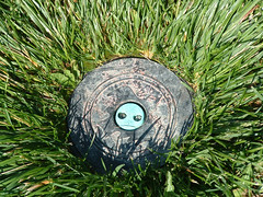 sprinkler head in grass, looks like a face