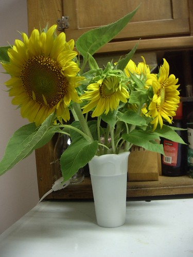 CSA10flowers