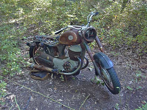 Motorcycle in the woods