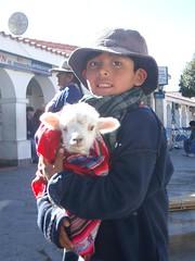 Humahuaca - 09 - Boy Llama