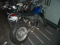 IMGP6243.JPG