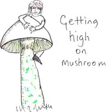 mushroomhigh