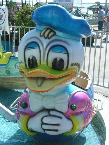 Stubble Duck