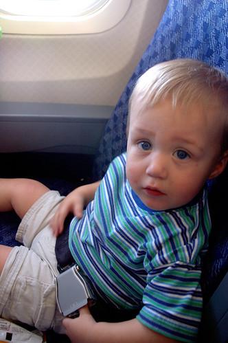 Noah on Plane