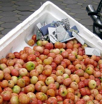 Dalat cherries