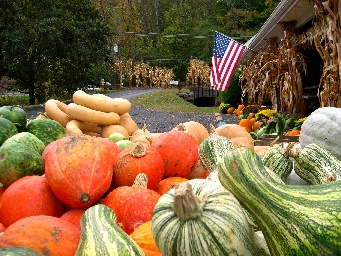 Trauger's Farm Market in Upper Bucks County Pennsylvania #2