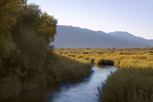 Owens River Swimhole