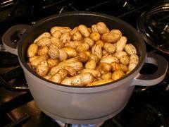 boiled mani