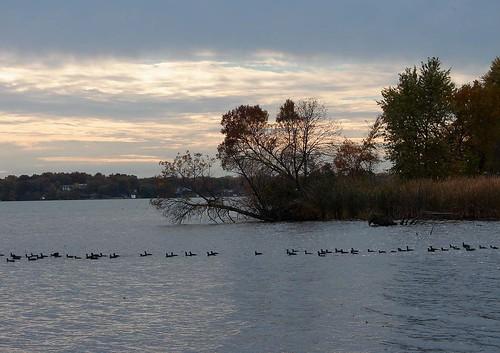 Madison Oct 05 144