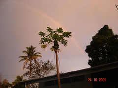 Rainbow in Gloony Day