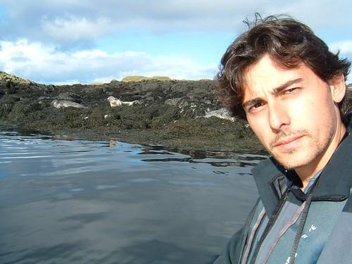 Dia 06 - 22 -Skye Island - Seals