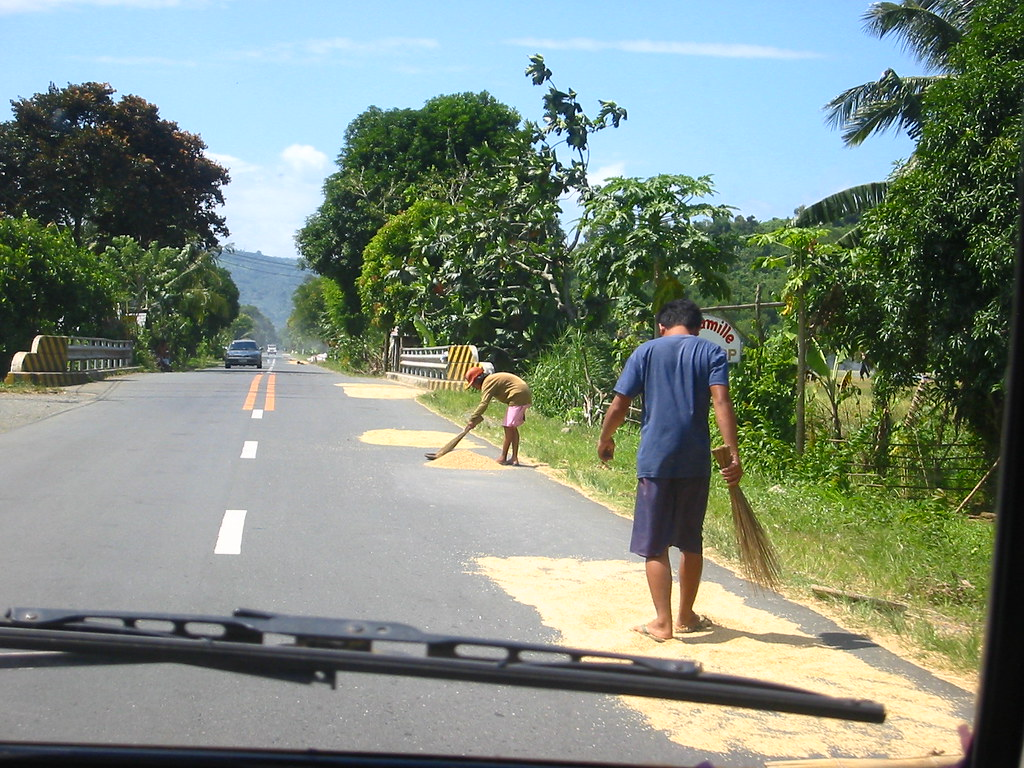 Rice highway