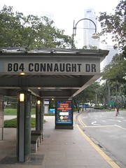Connaught Drive bus stop