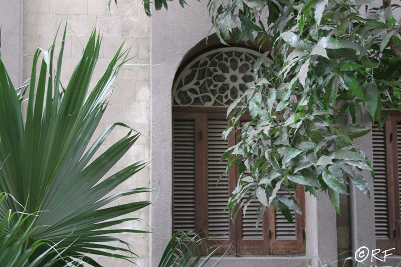 tree_window