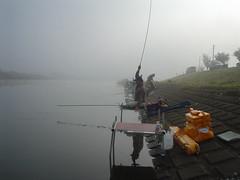 霧にけぶるびん沼