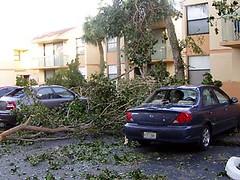 Hurricane Wilma 10
