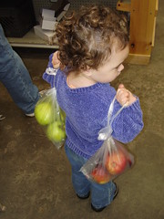 apple fair