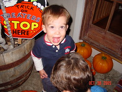 Drew excited about the pumpkins