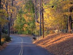 fancher road