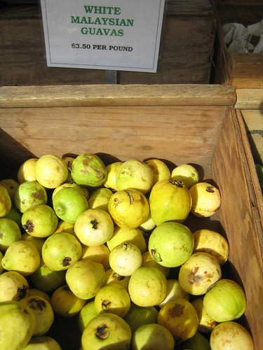 Malaysian guava