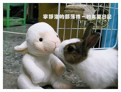 約克夏日記_20060115_光頭佬熱吻XD