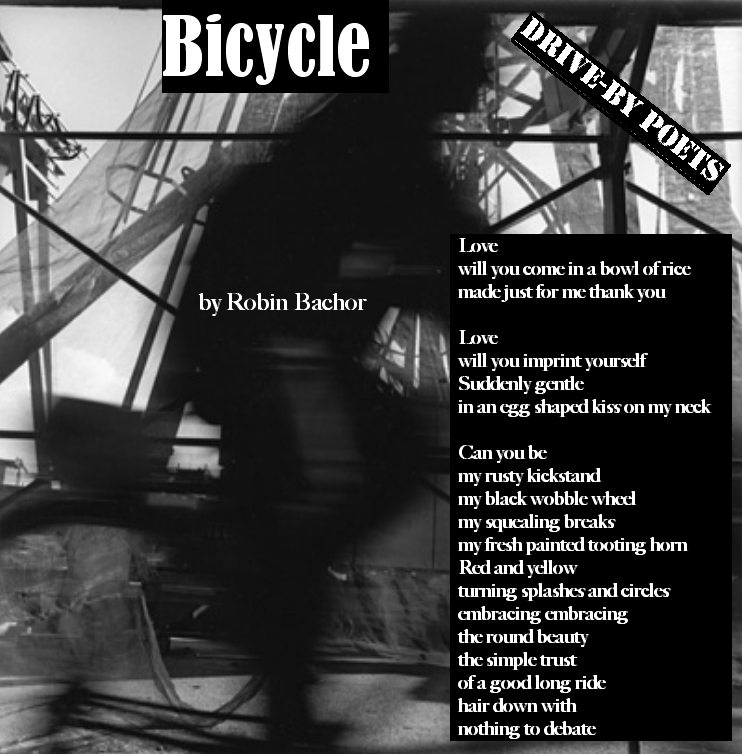 Bicycle by Robin Bachor