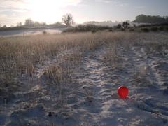Pics/Art/Red Ball/PICT0709.JPG