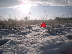 Pics/Art/Red Ball/PICT0755.JPG