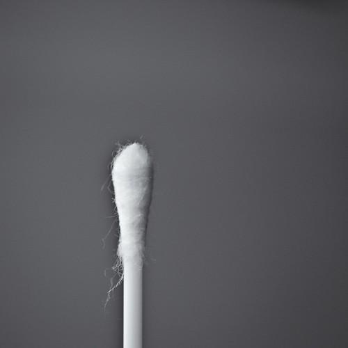чисто-палка-2_новый размер