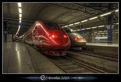 Thalys & TGV :: High speed trains photo by Erroba