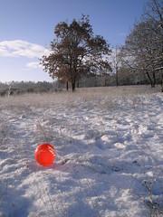 Pics/Art/Red Ball/PICT0747.JPG