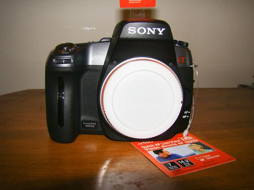 DSC00262.jpg