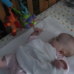 Grabbing my cot toys<br/>23 Nov 2009