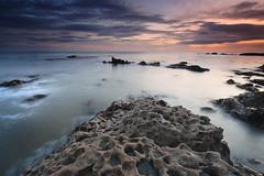 Marsden Bay photo by Alistair Bennett