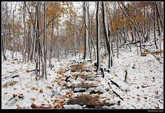 Two Seasons - 3 - photo by Ben Heine