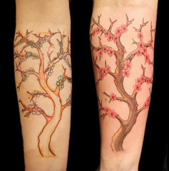 Cherry blossom tattoo photo by Miguel Angel tattoo
