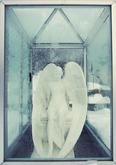 Angel photo by Kritisk massa