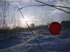 Pics/Art/Red Ball/PICT0723.JPG