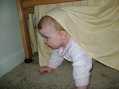 Hiding Under the Crib!