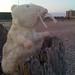 Toy Mouse on Littlehampton Beach