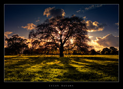 Irish Autumn photo by Gerg
