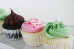 Christmas Cupcakes photo by Pink Penguin Cakes
