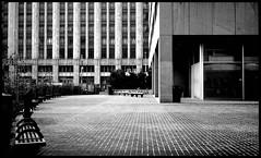 plaza photo by telmo32