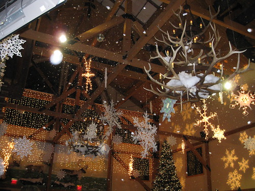GreatWolfLodge-Day1_151