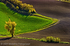 Autunno in Toscana 1 photo by Massimo Pelagagge